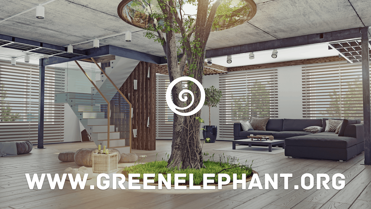 Why are we called Green Elephant?